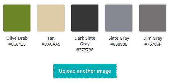 Canva Colours Screenshot of Colour Palette