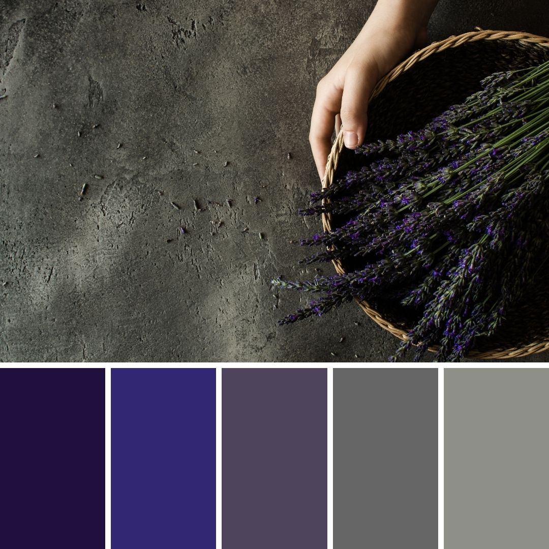 winter brand colour palettes