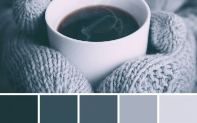 14 Winter Brand Colour Palettes for Inspiration