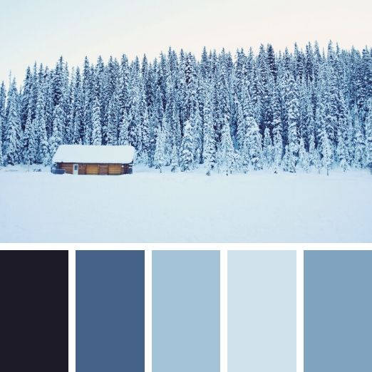 winter brand colours