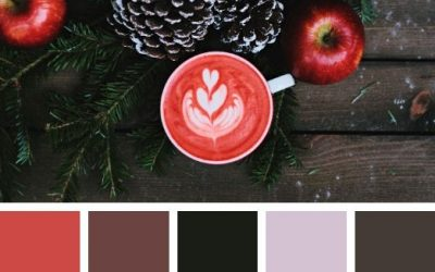 8 Winter Brand Colour Palettes for Inspiration