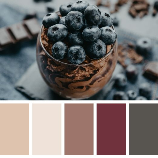Blueberries in a chocolate dessert cup winter colour palette