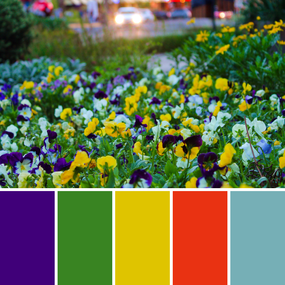 Spring Colour Palettes + Hex Codes 8