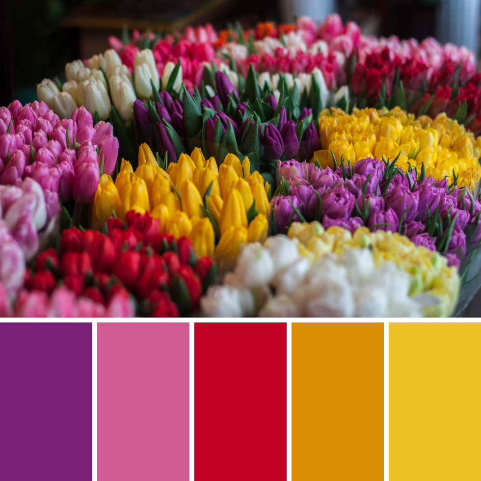 Spring Colour Palettes + Hex Codes 5