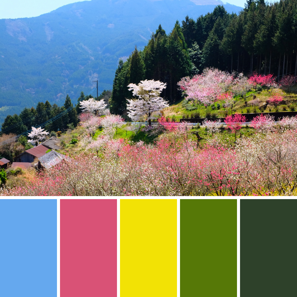 Spring Colour Palettes + Hex Codes 6