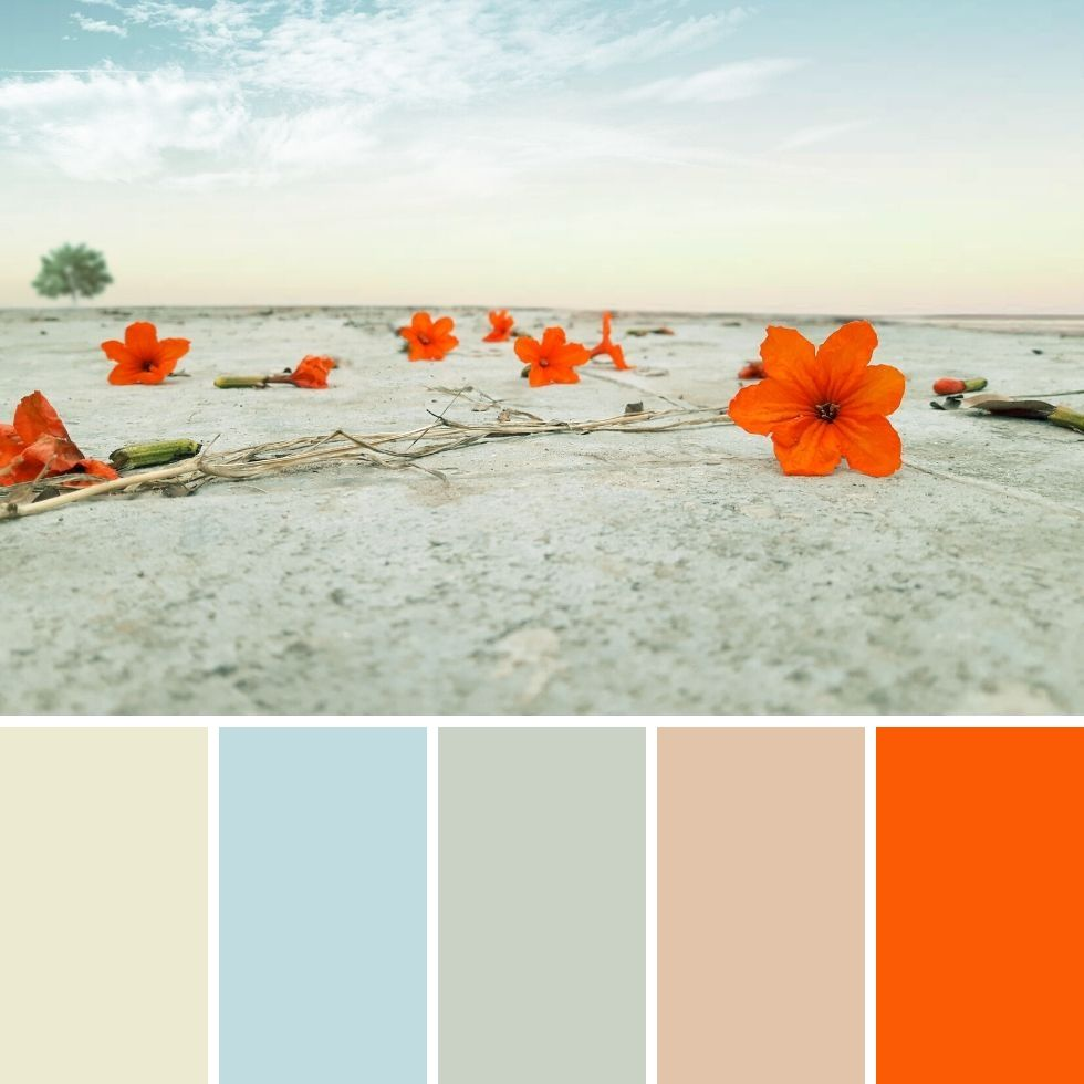 Summer brand colour palette beach and red flowers