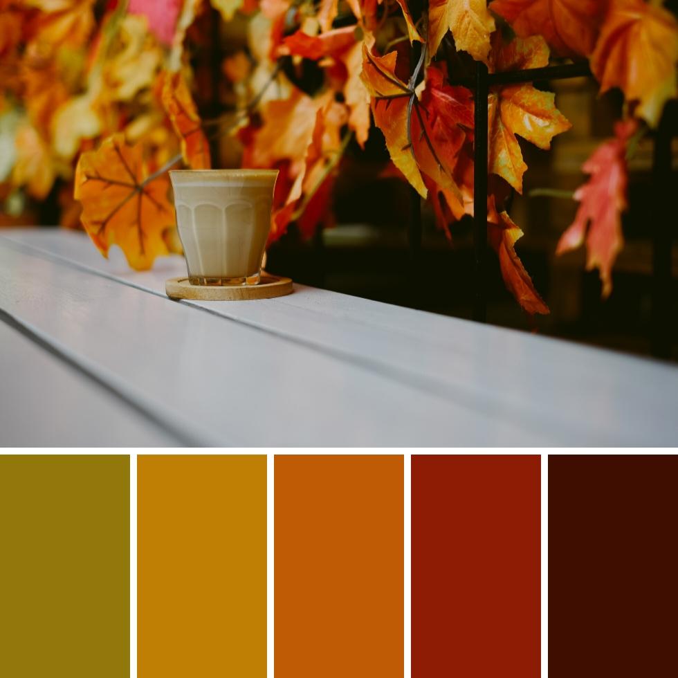 coffee cup multicolor leaves decor autumn colour palette