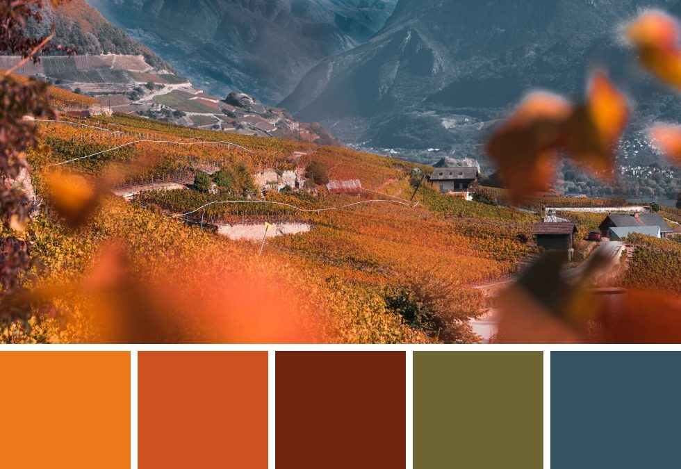 7 AUTUMN COLOUR PALETTES + HEX CODES