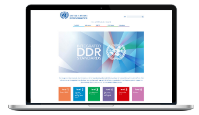 ngo website toolkit design for the UN